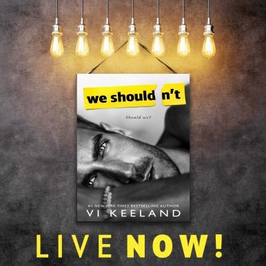 Excerpt Reveal We Shouldnt By Vi Keeland Ac Book Blog